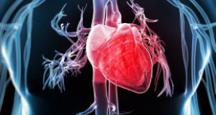 Viêm nha chu ảnh hưởng tới các bộ phận trong cơ thể